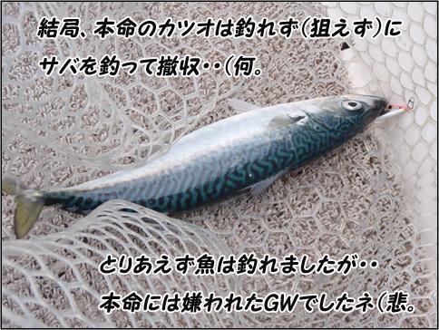 09gw6.jpg